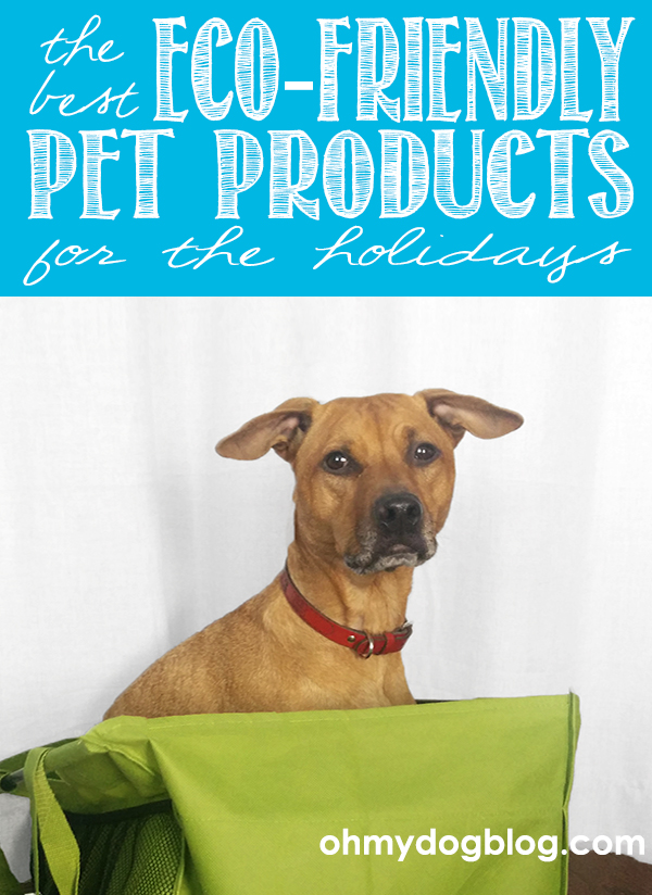 The best eco-friendly pet products for the holidays (with giveaways!)