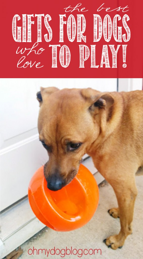 The best holiday gifts for dogs who love to PLAY! (with giveaways!)