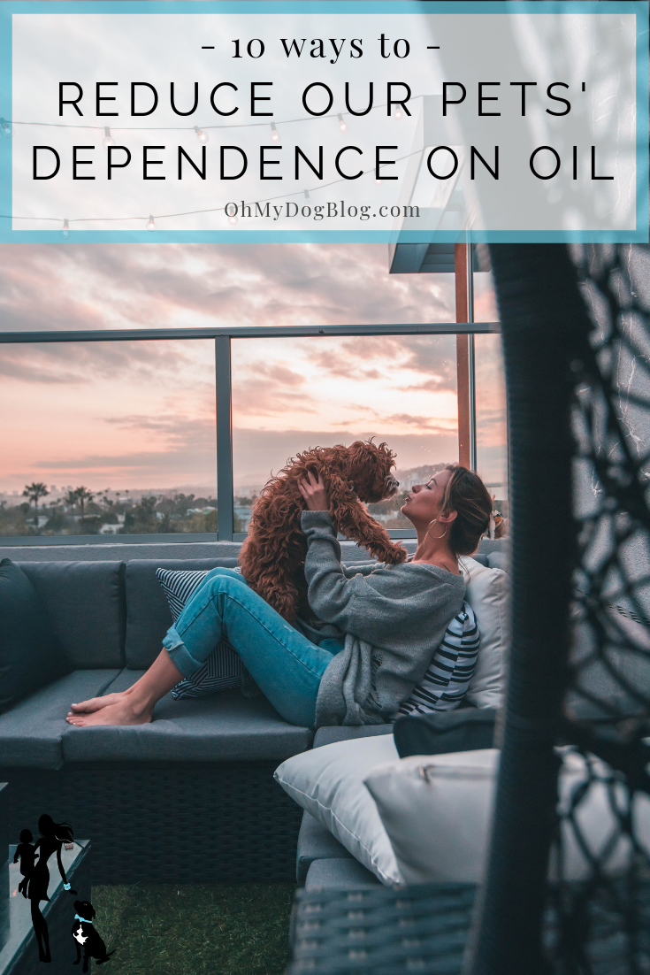 10 ways to reduce our pets' dependence on oil