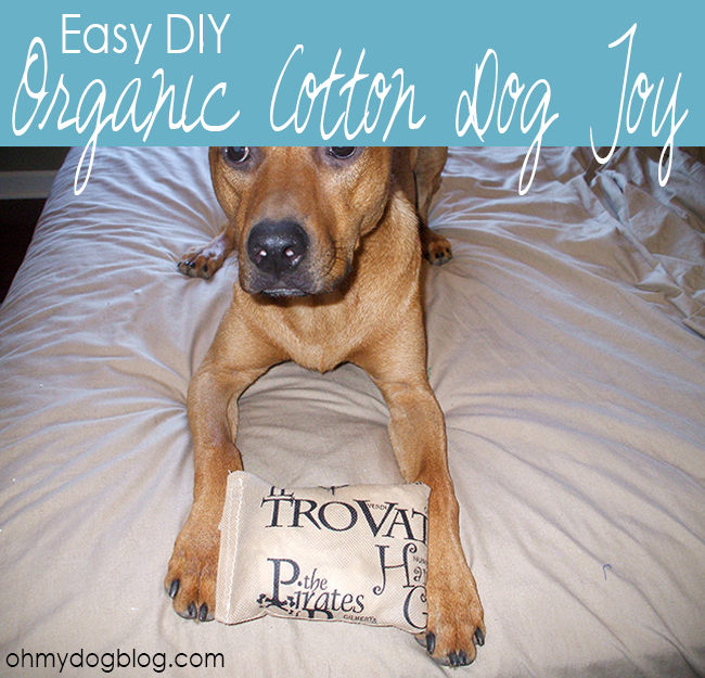 DIY Organic Cotton Dog Toy