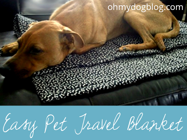 Easy DIY Pet Travel Blanket