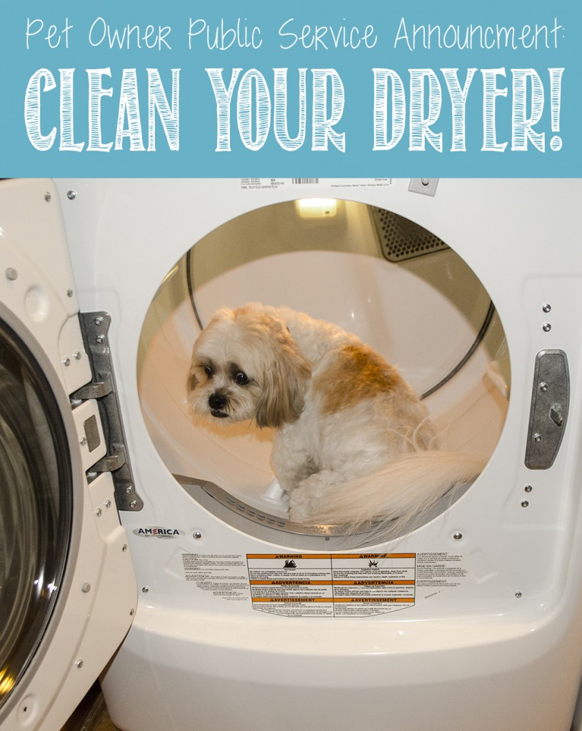 Pet Owner PSA: Clean Your Dryer!