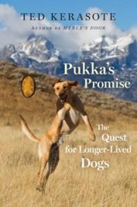 Pukkas Promise_hres