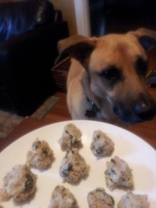 The fish balls from Dinner for Dogs