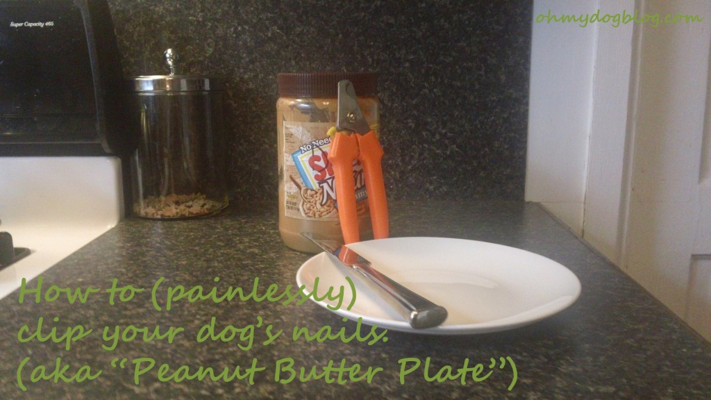 How to clip your dog's nails: Peanut butter plate