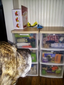pet care storage