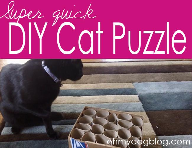 DIY Cat Puzzle