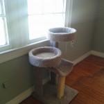 Newt's favorite part of her cat habitat