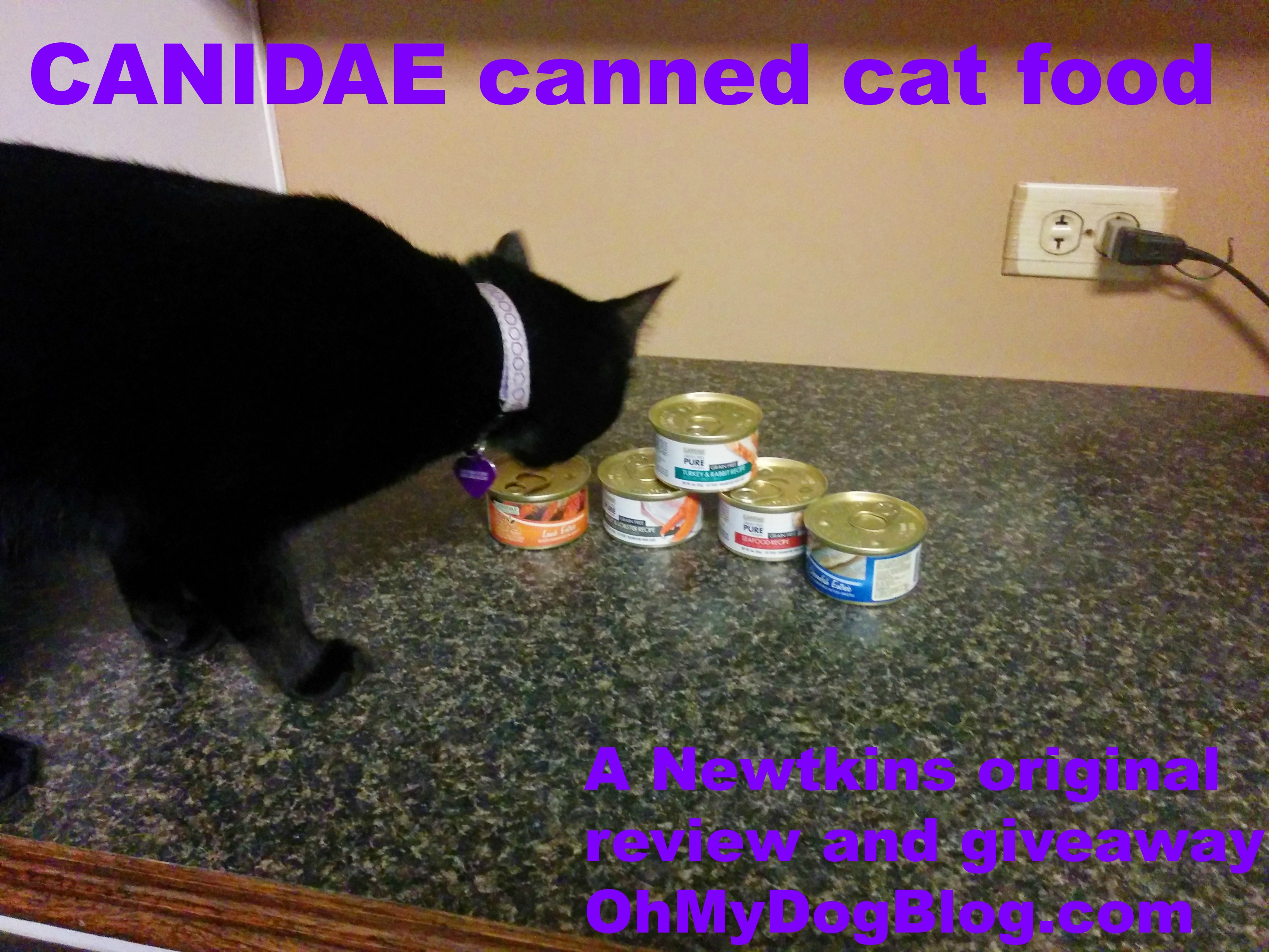 CANIDAE canned cat food review and giveaway