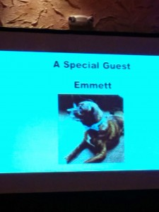 PetSafe gala to fight canine cancer