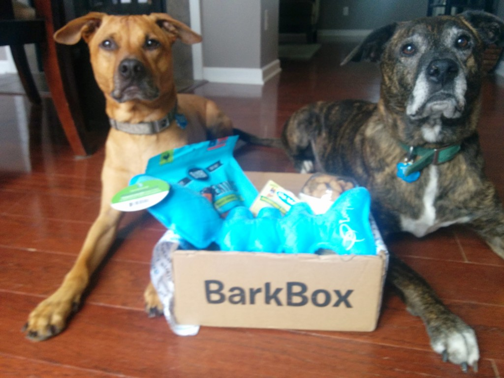 BarkBox July