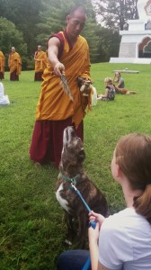 Emmett gets blessed by the Tibetan monks