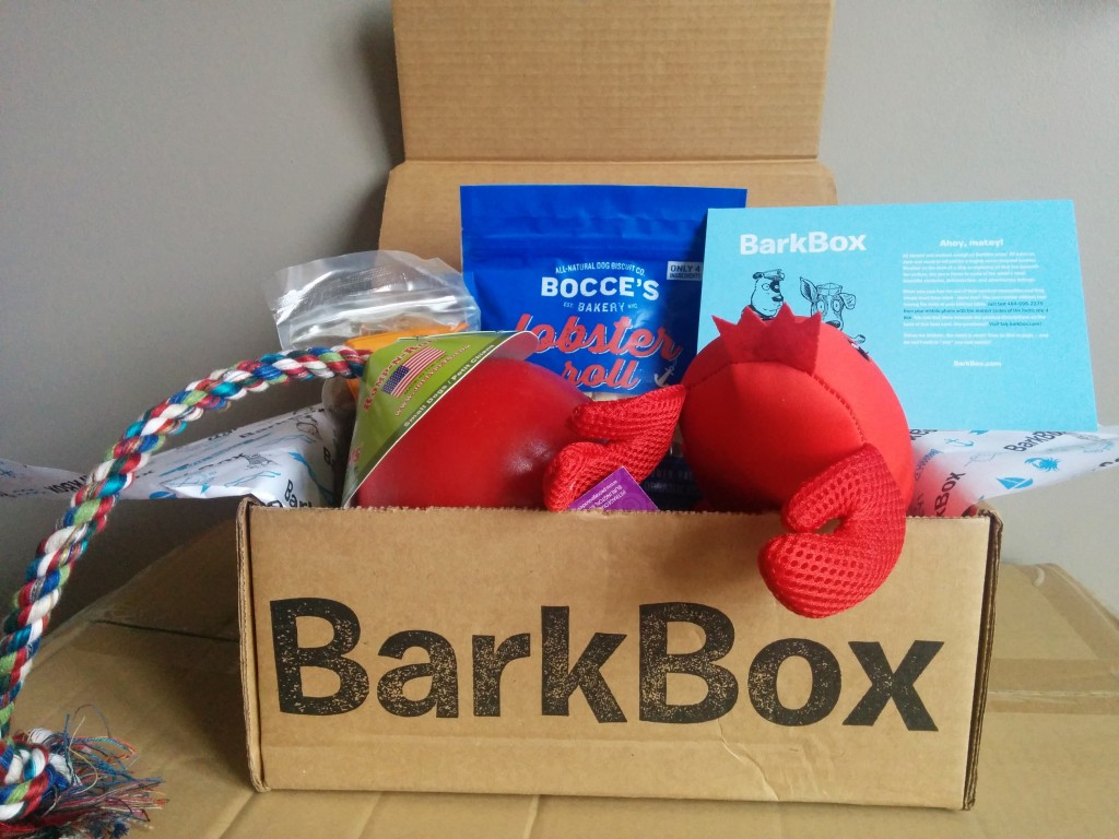 August BarkBox