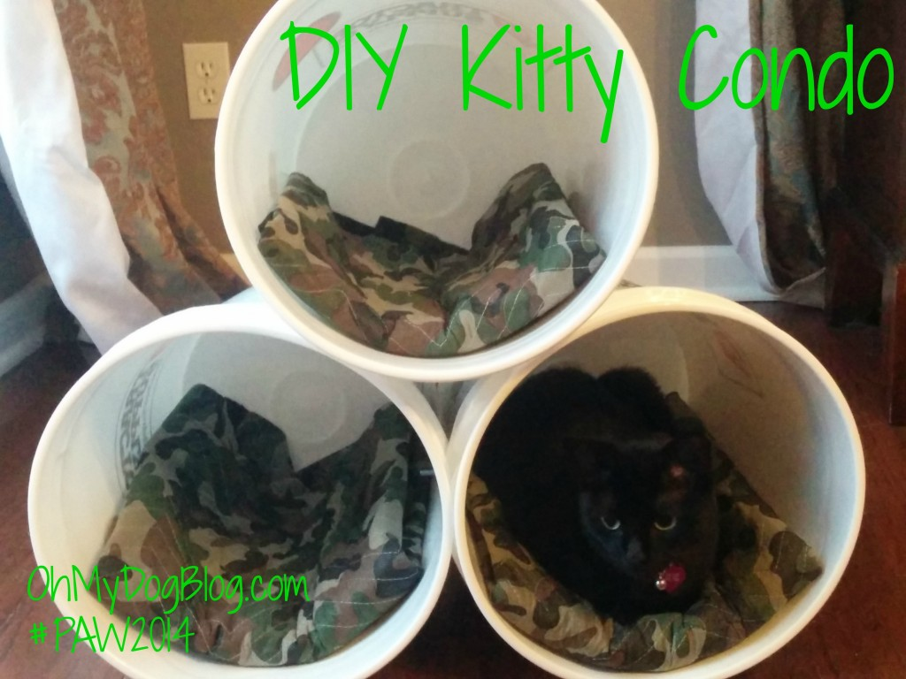 DIY Kitty Condo #PAW2014