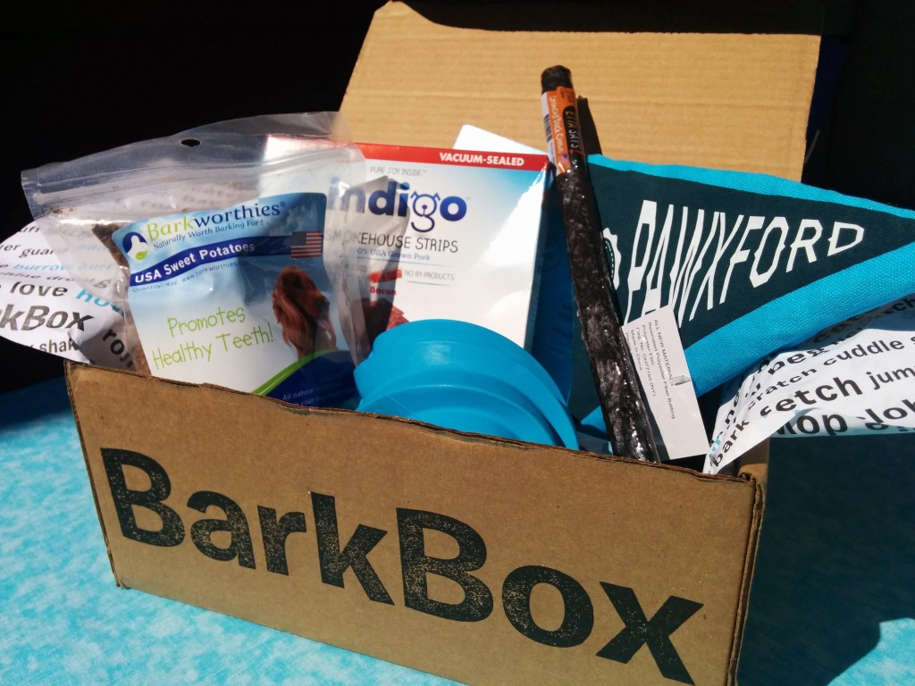 September BarkBox