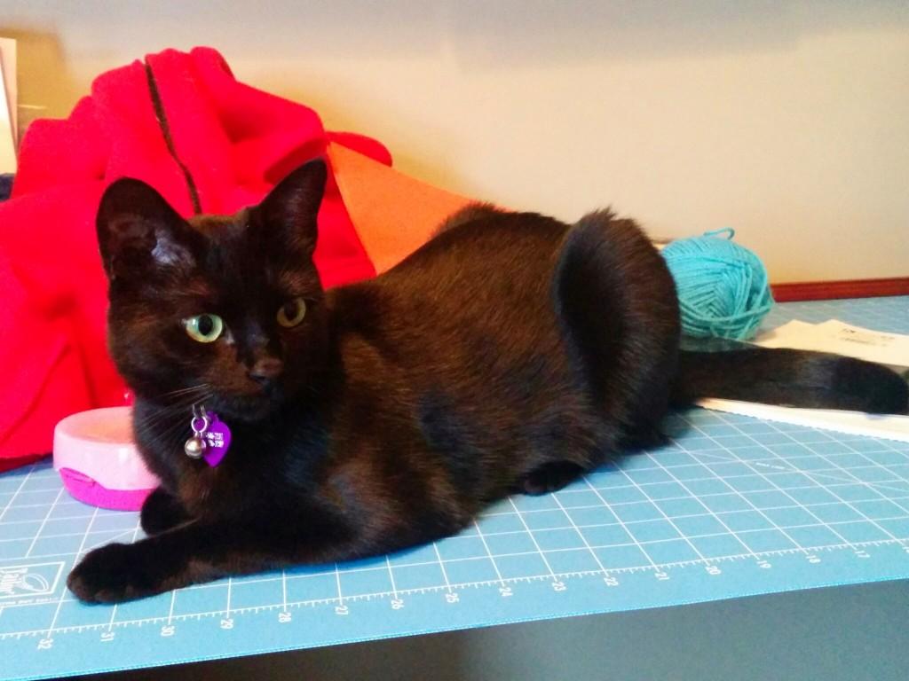 Newt supervises Halloween costume creation