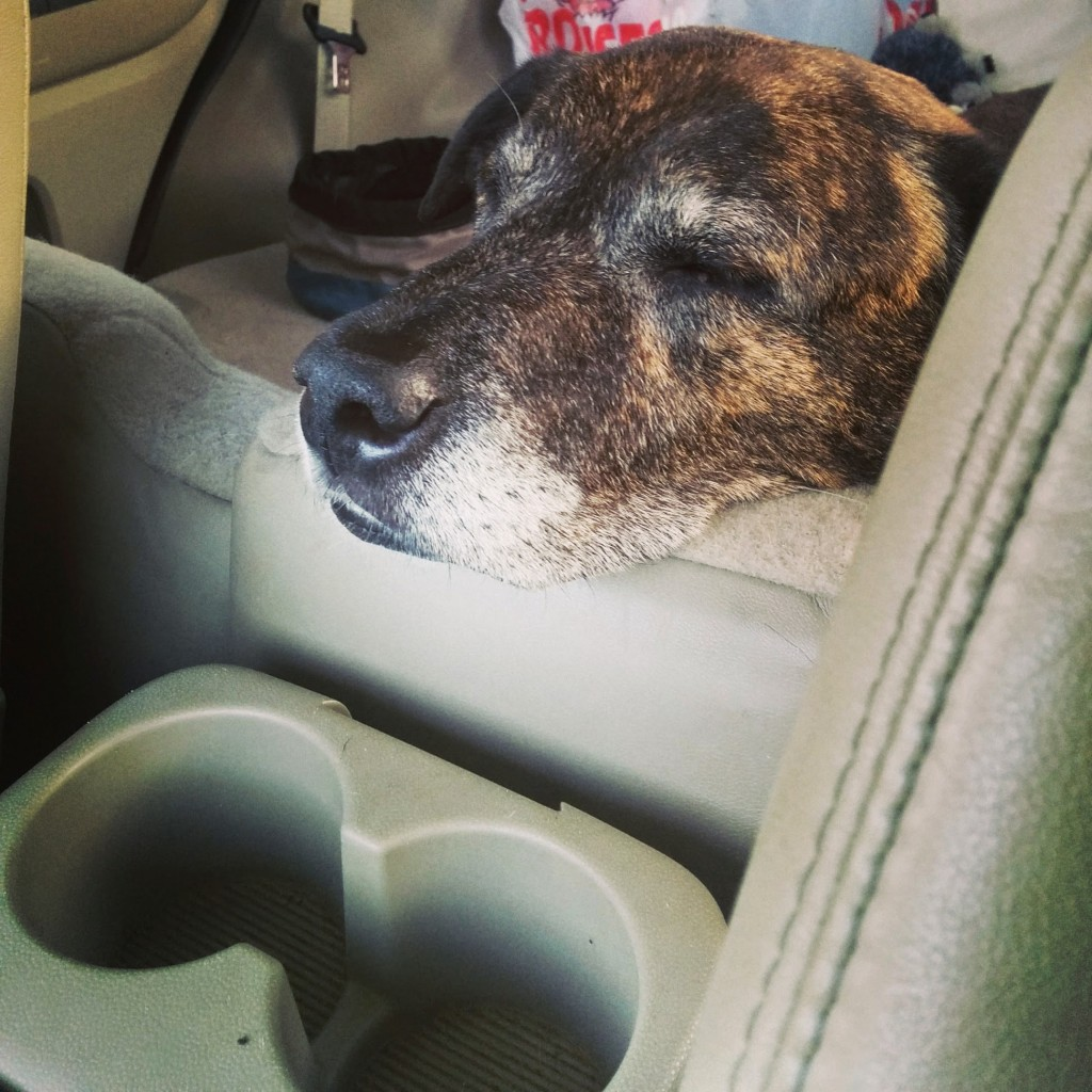 Emmett sleeps in the car