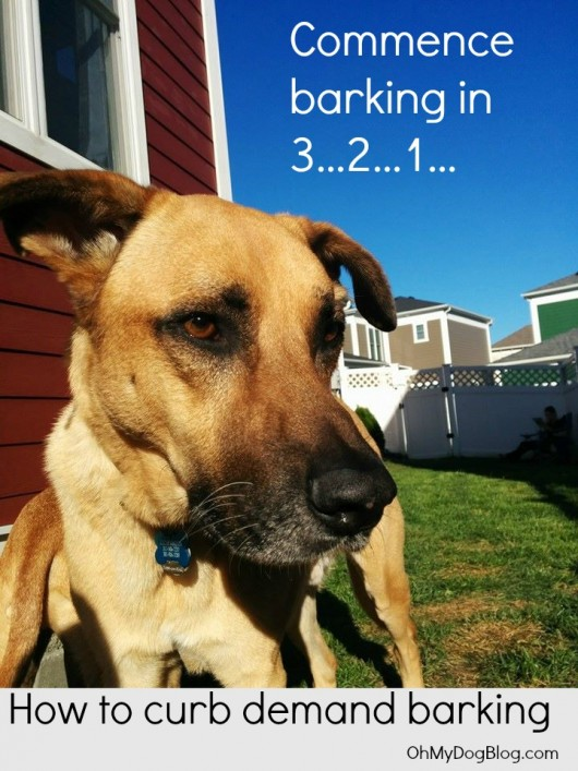 How to curb demand barking