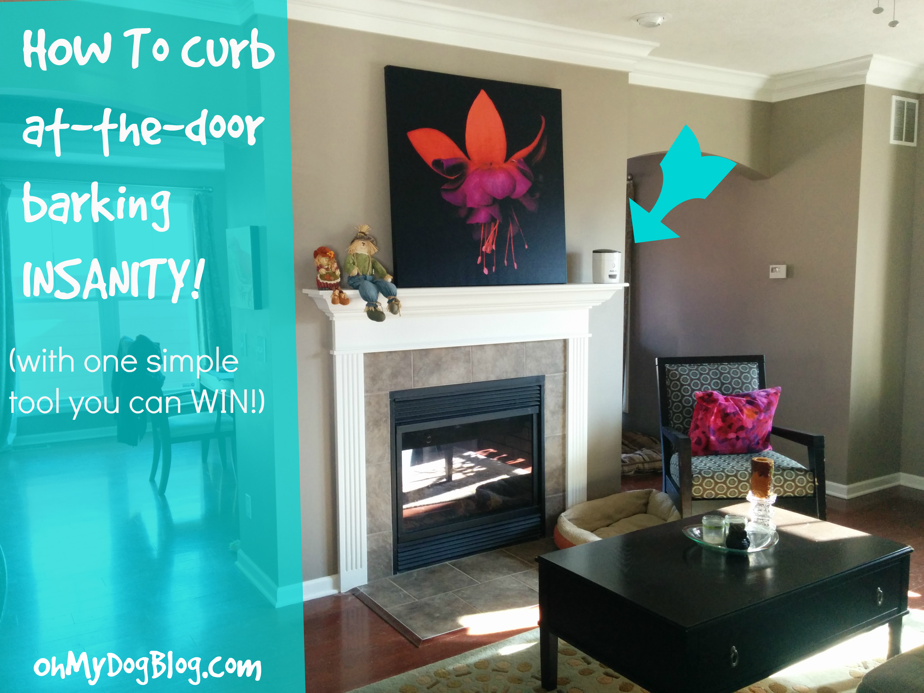 How to solve barking at the front door (with giveaway!)