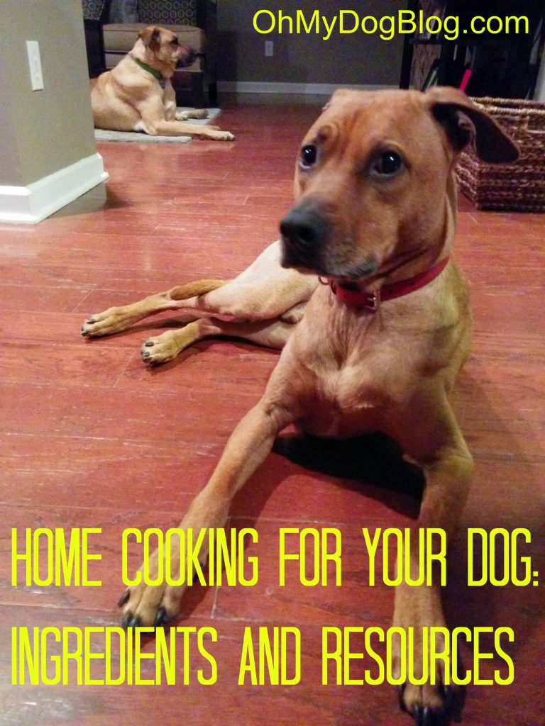 Home cooking for your dog: Ingredients and resources