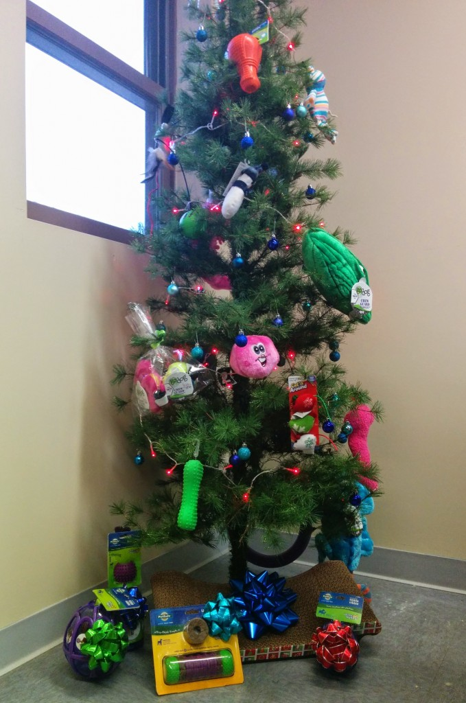 Christmas in the community: MCHA's finished tree