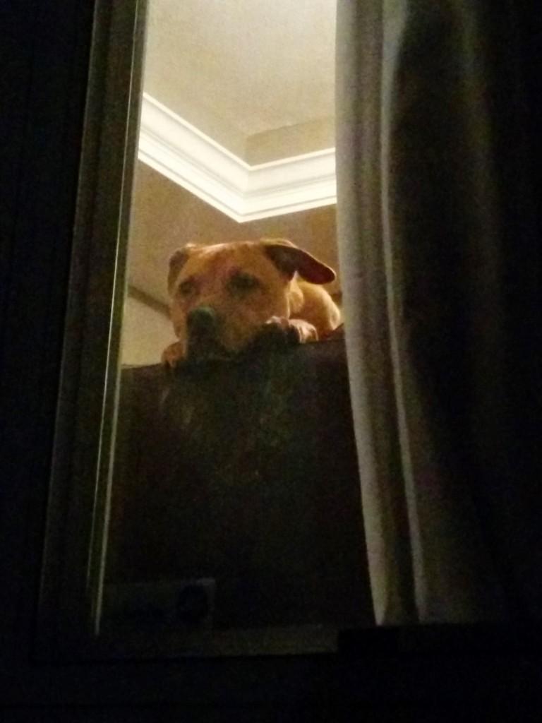 I'm watching you...