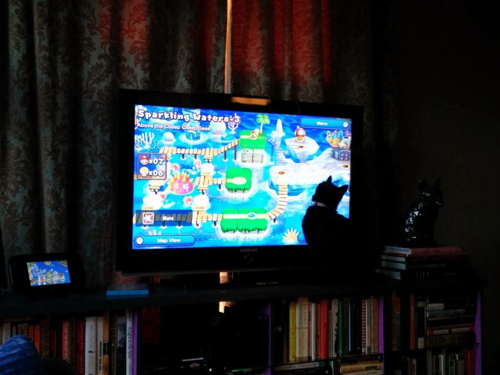Newt likes Nintendo