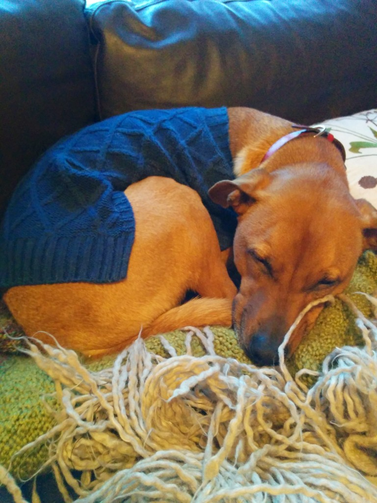 Cooper in his cable-knit sweater