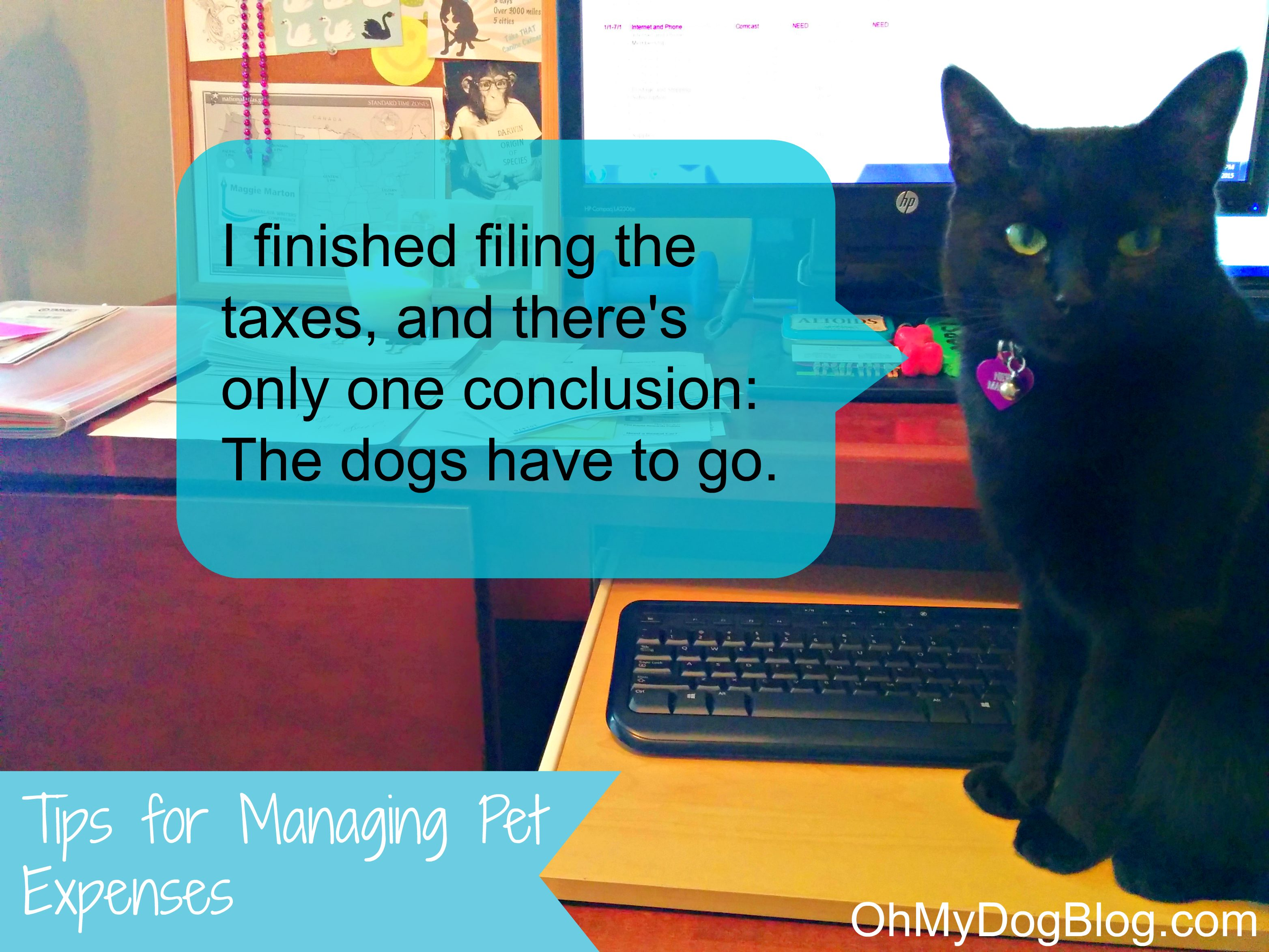 Tips for Managing Pet Expenses