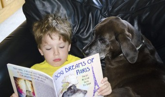 A Dog Dreams of Paris book review and giveaway
