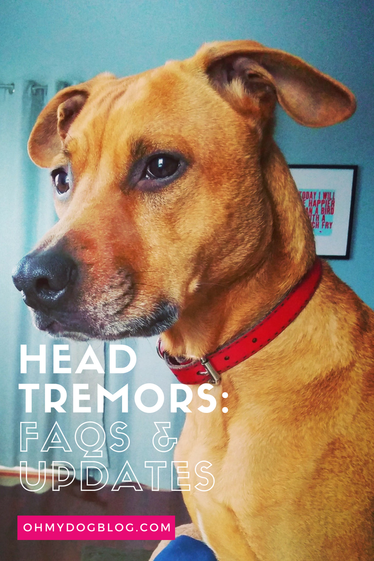 Idiopathic Head Tremors_ FAQs and Updates