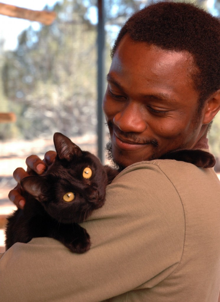 #RelationshipGoals: Adopt this sweet kitty