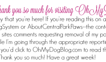 Thanks for reading OhMyDogBlog.com