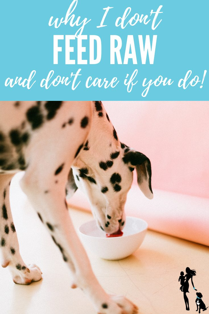 Why I don't feed my dogs raw... but couldn't care less if you do!
