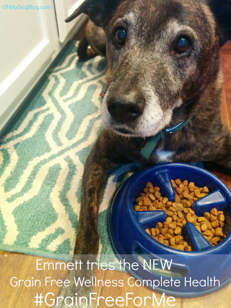 Emmett tries the new Grain Free Wellness Complete Health