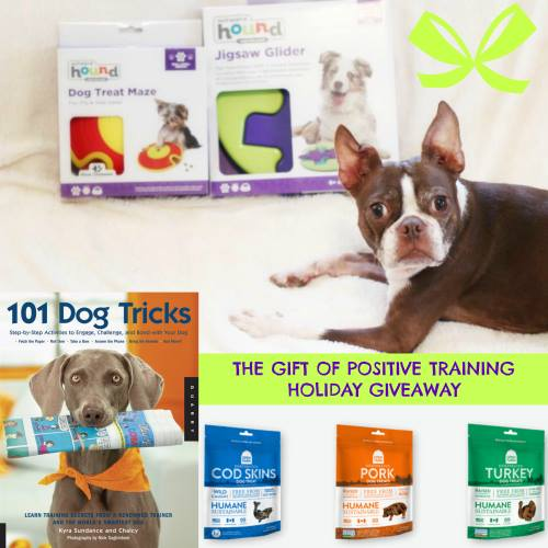 the-gift-of-positive-training-holiday-giveaway