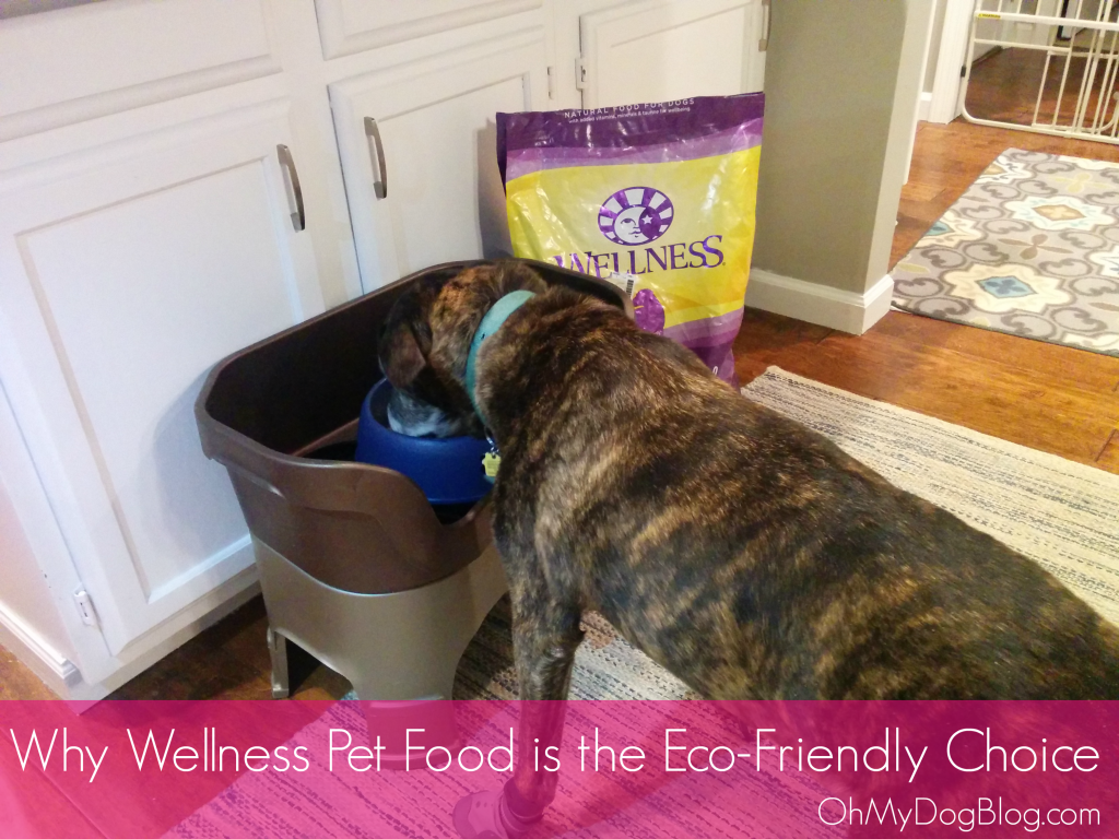 Why Wellness is the Eco-Friendly pet food choice | OhMyDogBlog.com