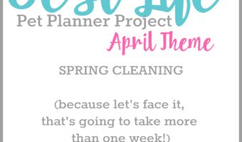 Best Life April Themes