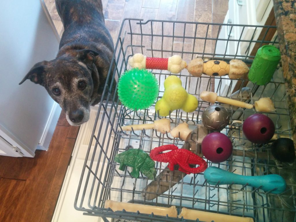 Sanitizing dog toys