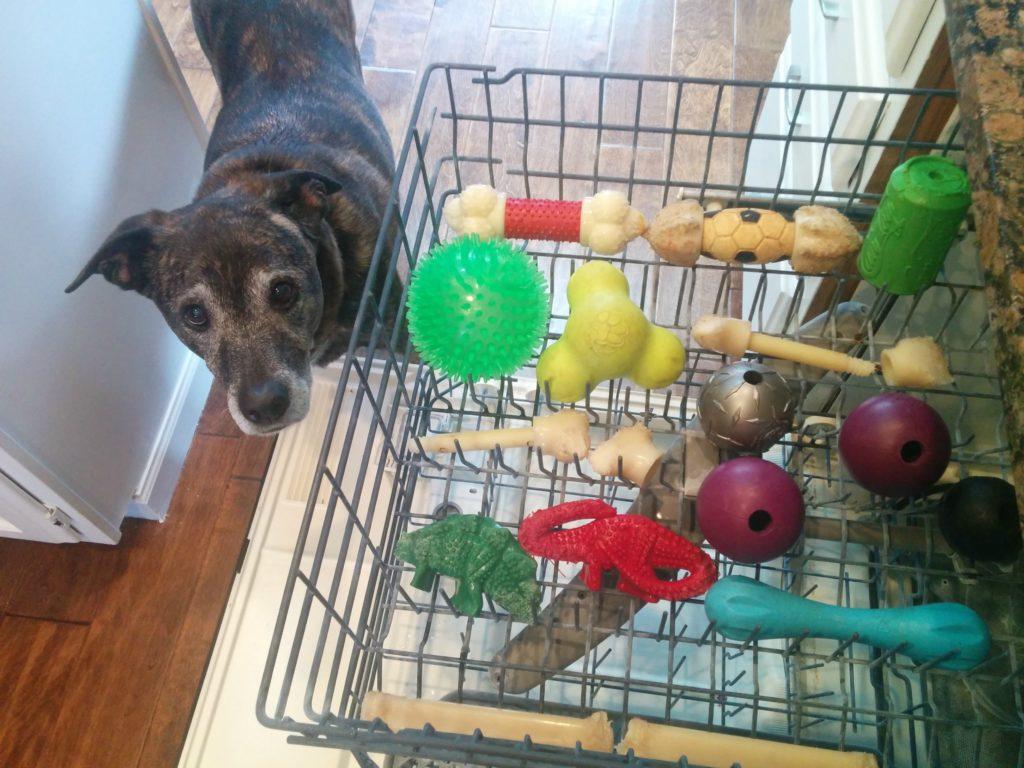 Sanitizing dog toys