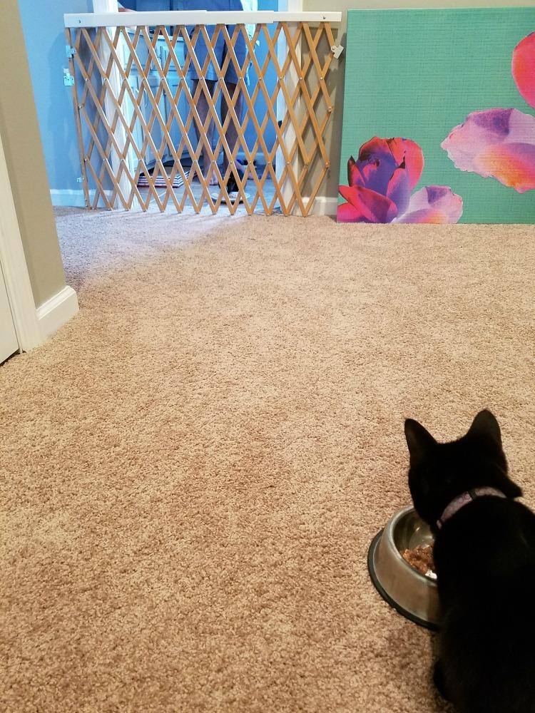 Newt sees Ripley