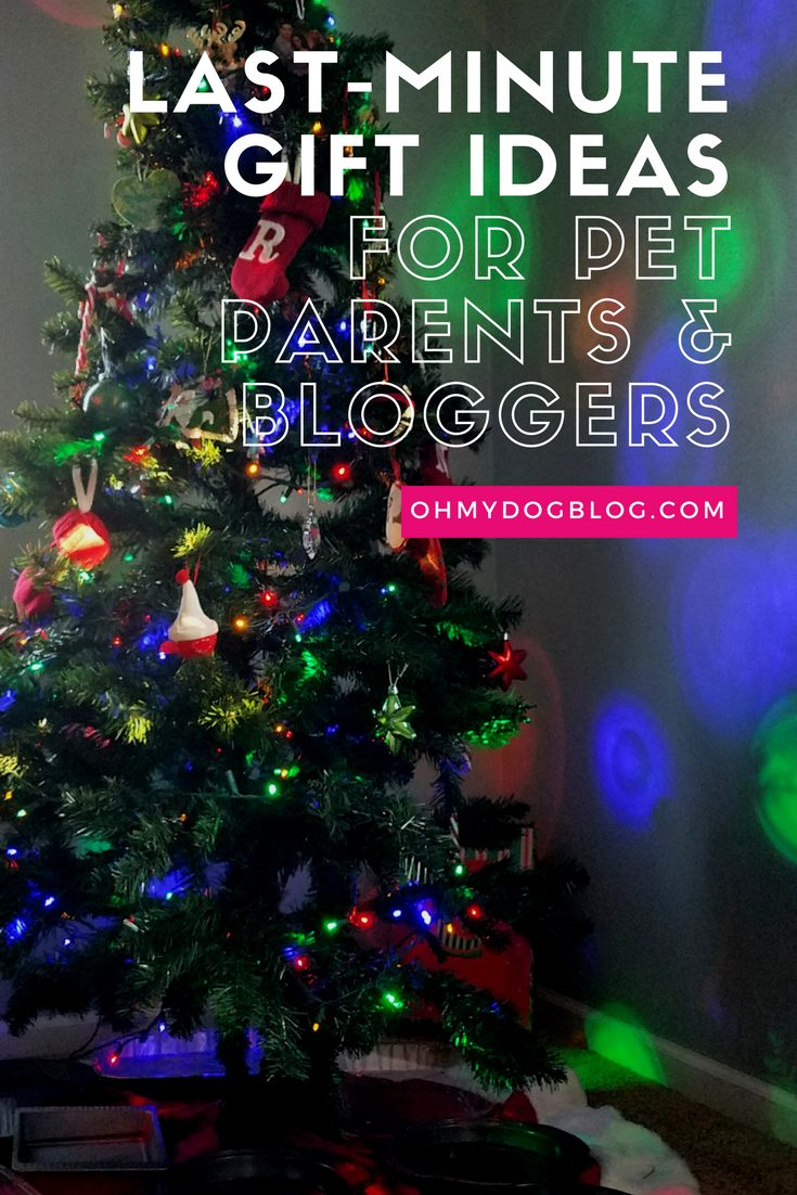 Last-Minute Gifts for Pet Parents AND Gift Ideas for Pet Bloggers