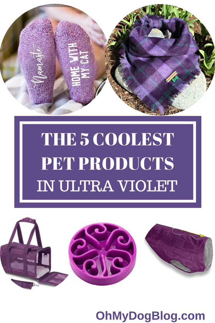 The 5 coolest pet products in ultra violet