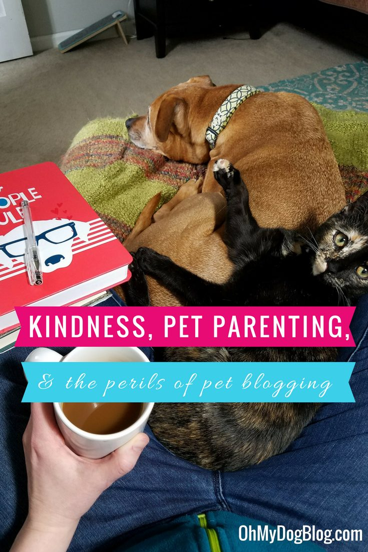 Kindness, Pet Parenting, and the Perils of Pet Blogging