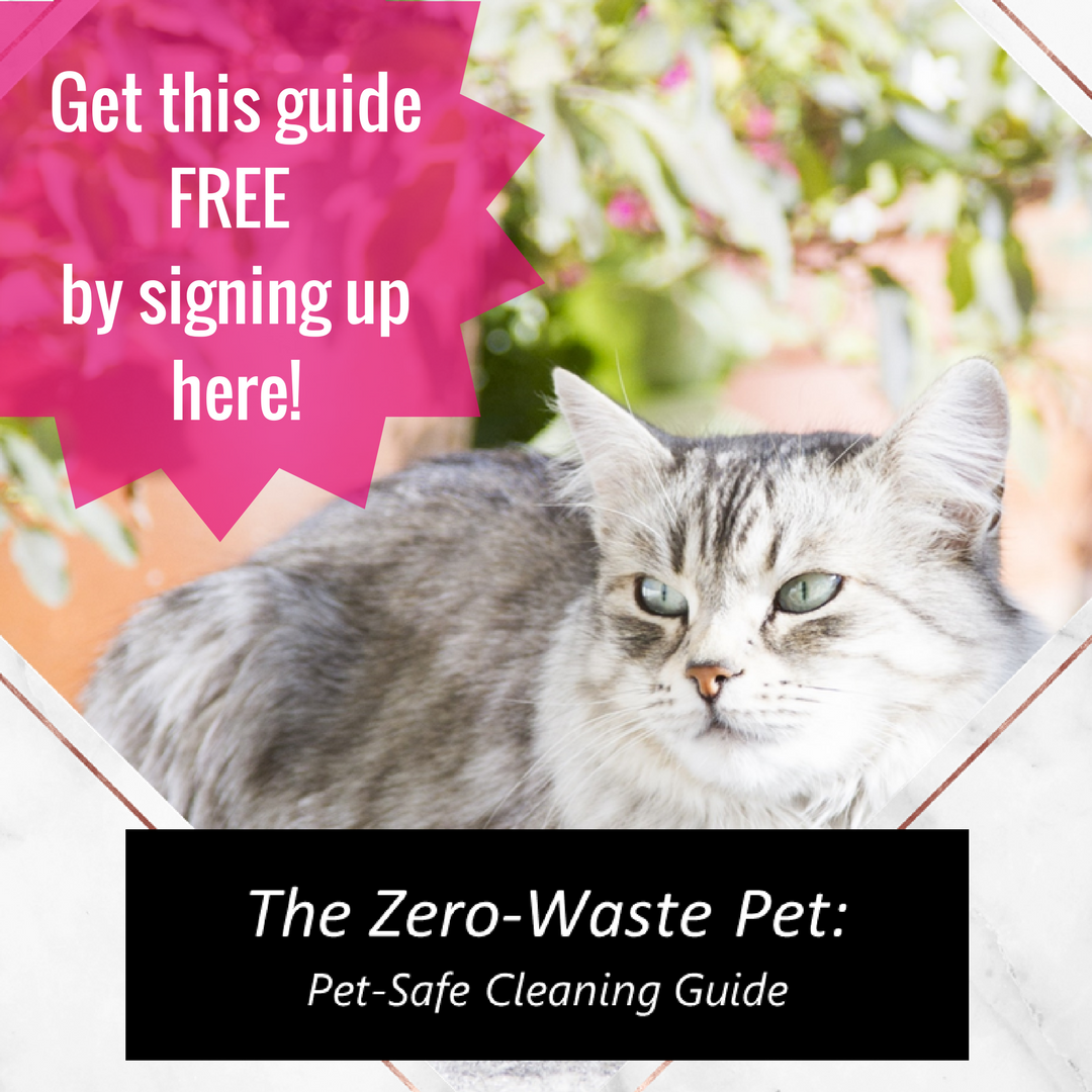 Get the Zero-Waste cleaning guide FREE! (1)