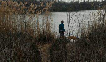 Hiking to a duck pond with Cooper _ April 2018