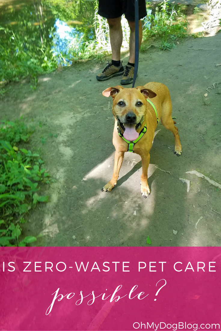 Zero-waste pet care is impossible... but that doesn't mean you shouldn't try!