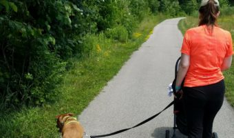 Running with a dog that pulls... and everything else you want to know about running with dogs