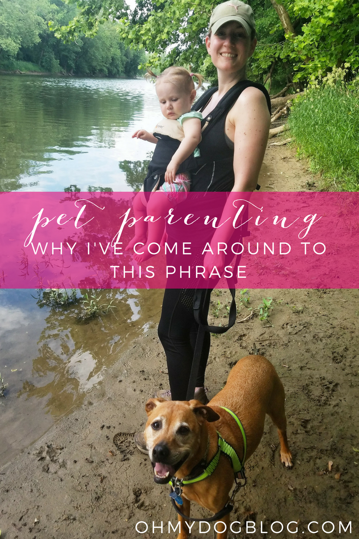 Why I've come around to the phrase pet parenting