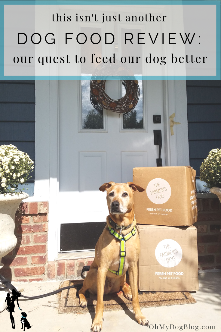 Not Another Dog Food Review Our Continued Quest To Feed Our Dog
